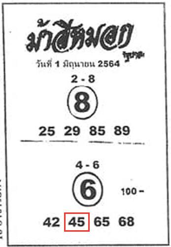 ม้าสีหมอก1/6/64