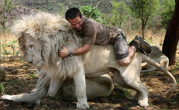 ผู้ชายขี่หลังสิงโต